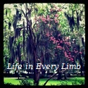Life in Every Limb