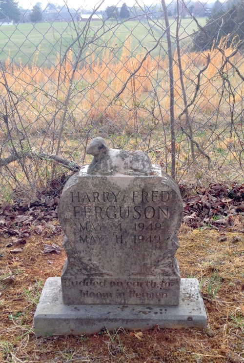 beaver creek cemetery 3