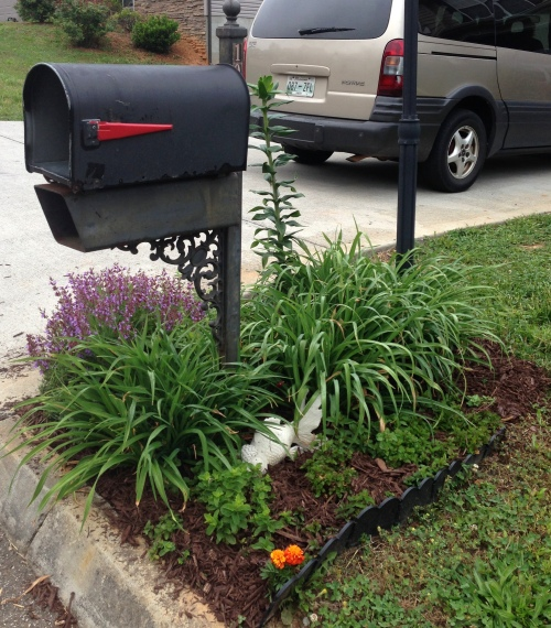Mailbox Garden 4