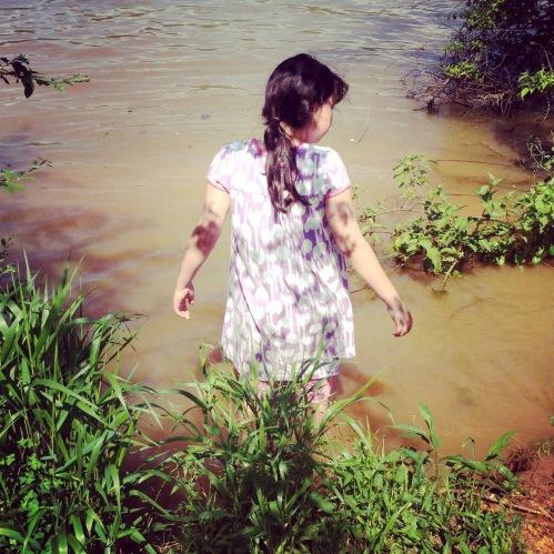 Lorelei wading at Melton Hill Lake