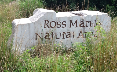 Ross 4