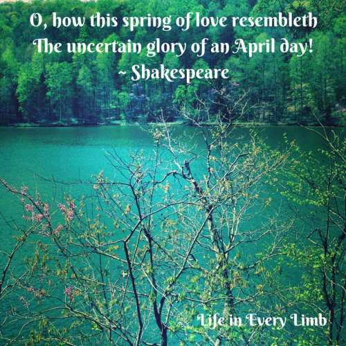 o-how-this-spring-of-love-resembleththe-uncertain-glory-of-an-april-day-shakespeare