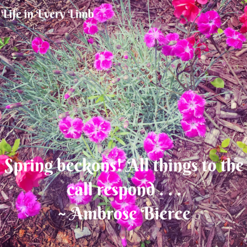 spring-beckons-all-things-to-the-call-respond-ambrose-bierce