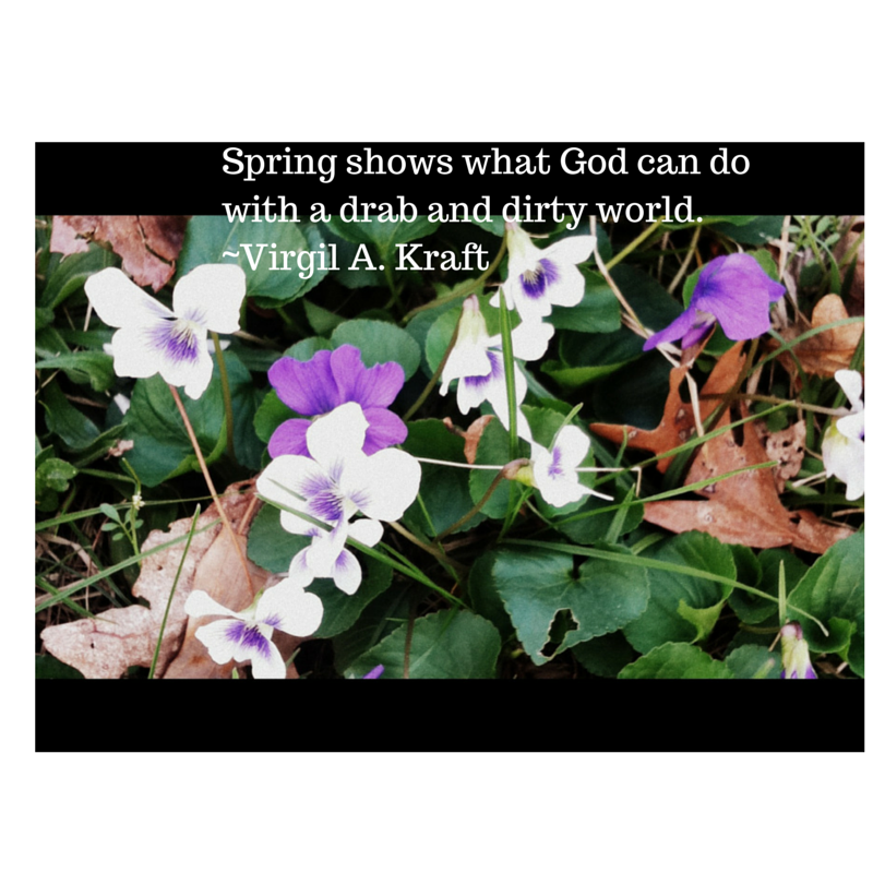 spring-shows-what-god-can-do-with-a-drab