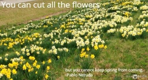 springtime 7