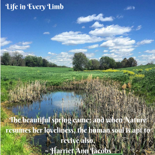 the-beautiful-spring-came-and-when-nature-resumes-her-loveliness-the-human-soul-is-apt-to-revive-also-harriet-ann-jacobs