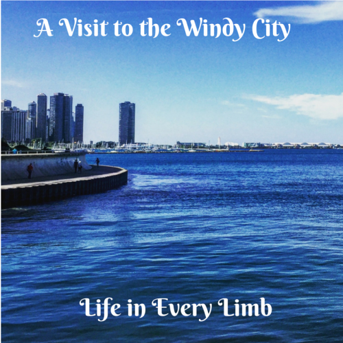 A Visit to the Windy City