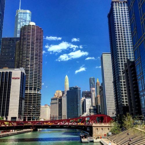 chicago 54