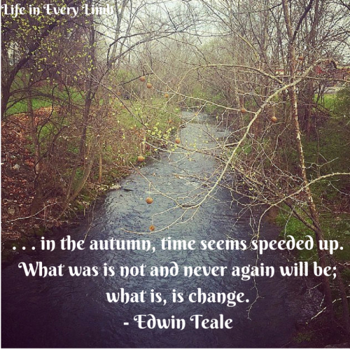 Change is a measure of time and, in the autumn, time seems speeded up. What was is not and never again will be; what is is change.- Edwin Teale