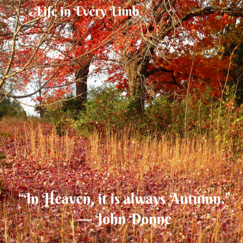"""In Heaven, it is always Autumn-."" ― John Donne"