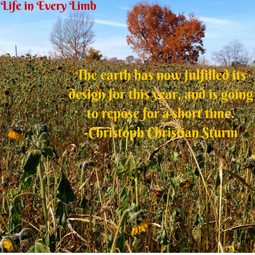 The earth has now fulfilled its design for this year, and is going to repose for a short time.-Christoph Christian Sturm