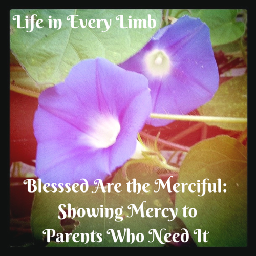 Blesssed are the Merciful- Showing Mercy to Parents Who Need It