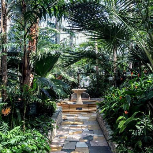 conservatory 22