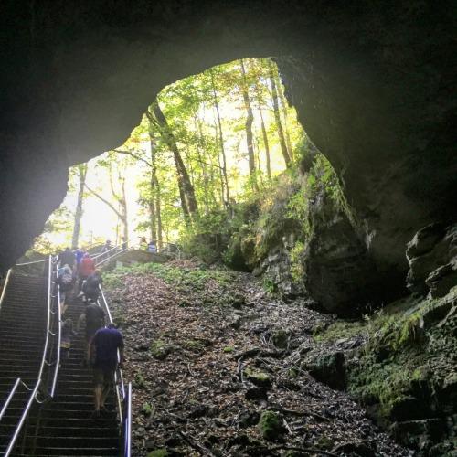 Mammoth Cave 10