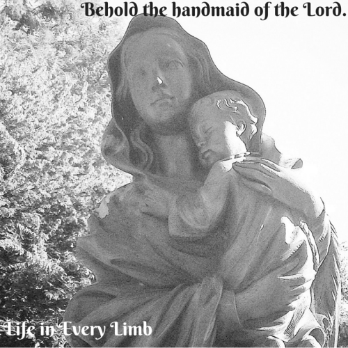 Behold the handmaid of the Lord. Let it be done unto me according to thy word.