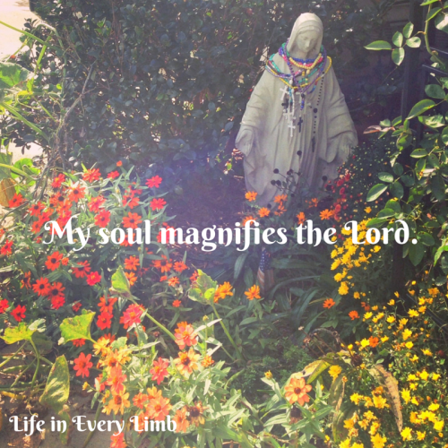 My soul magnifies the Lord.
