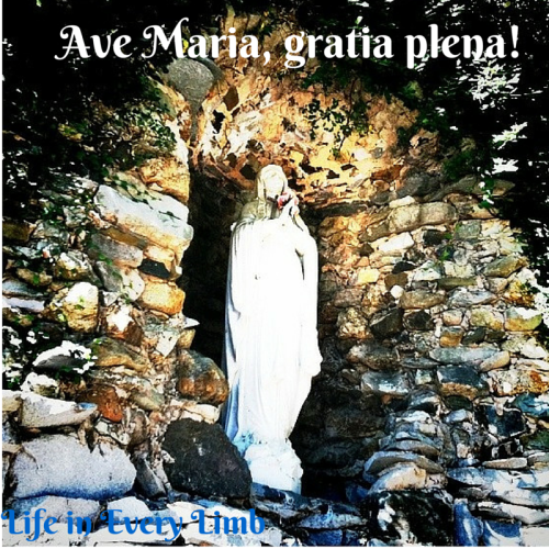 ve Maria, gratia plena!