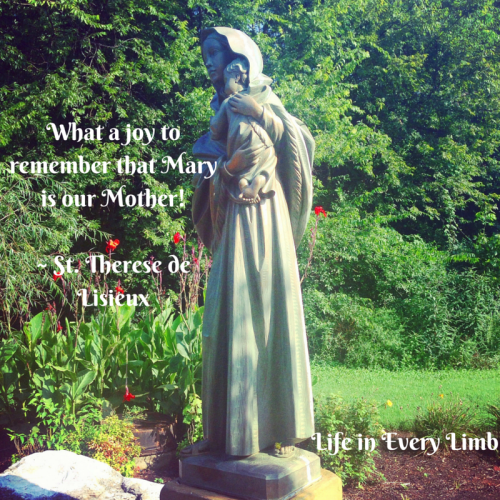 What a joy to remember that Mary is our Mother!- St. Therese de Lisieux